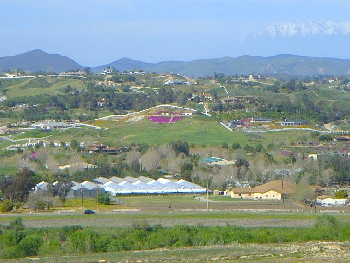 view in Temecula